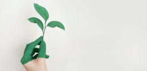 sustentabilidade empresarial portugal